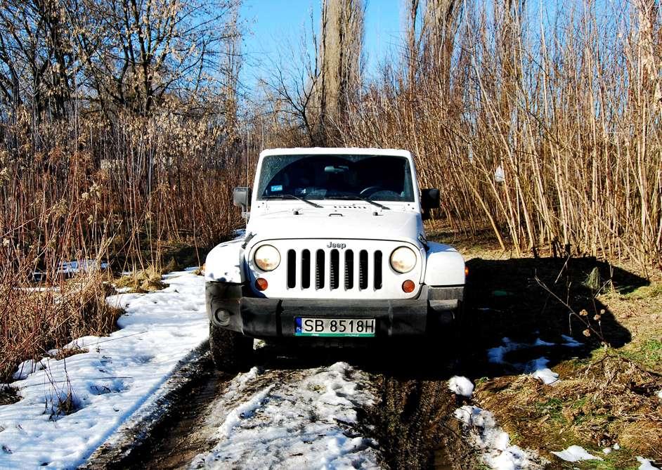 jeep-wrangler-14.jpg
