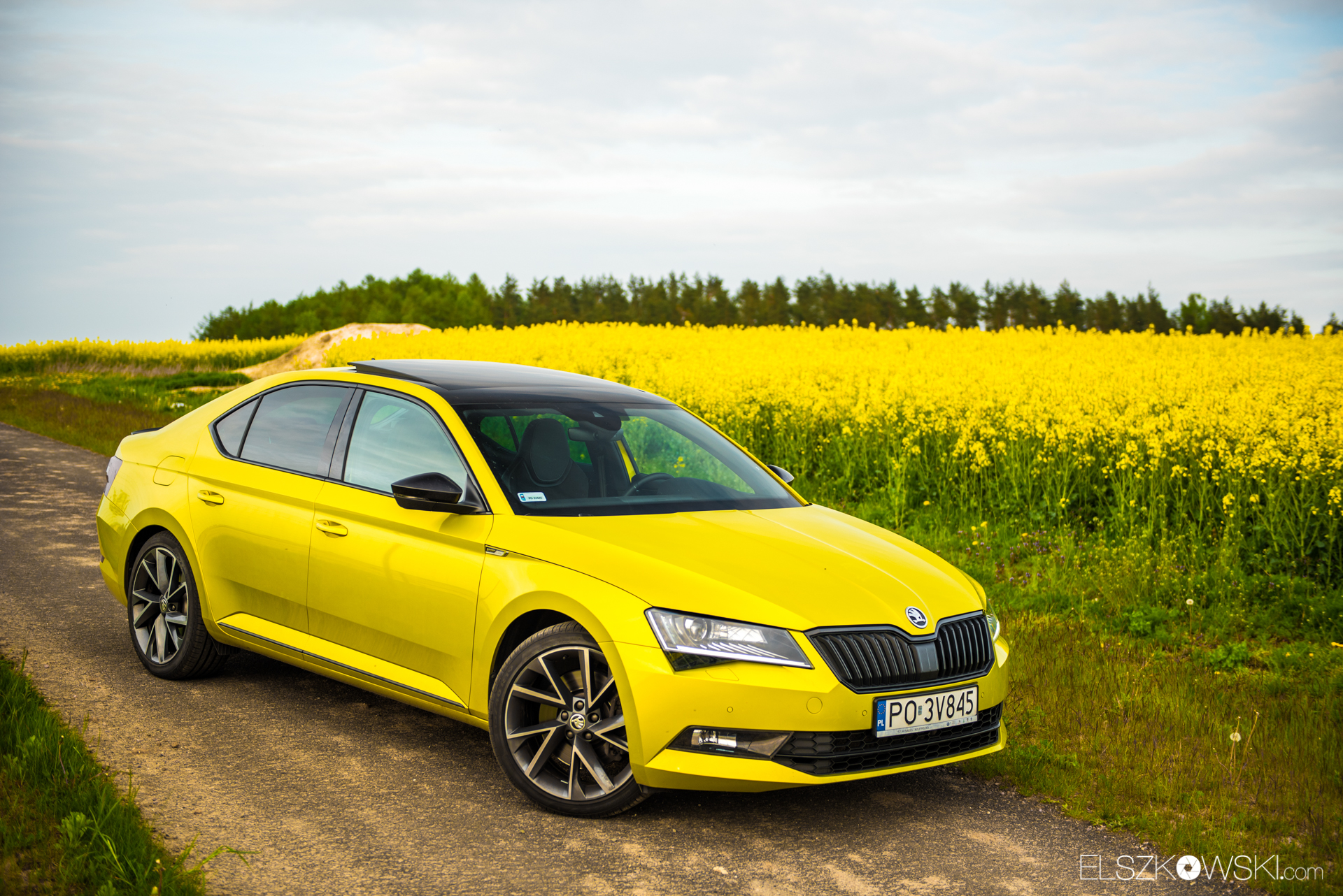 Skoda Superb Sportline Dragon Skin