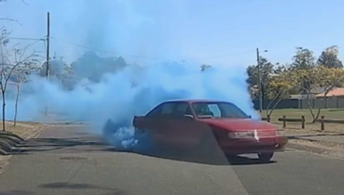 Holden Commodore gender reveal